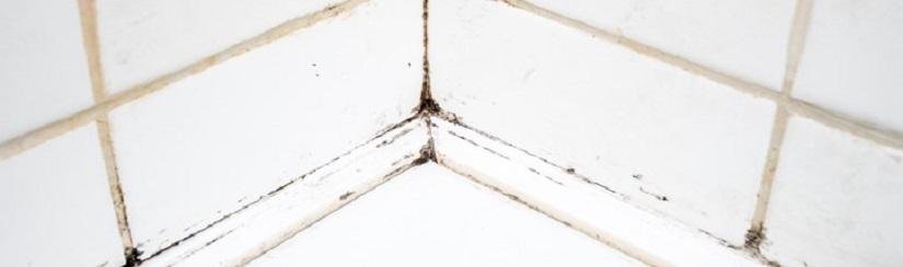 C mo proteger y evitar las humedades - Como evitar humedades en las paredes ...