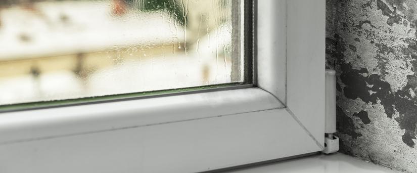 C mo eliminar las humedades en casa - Como quitar las humedades de las paredes ...