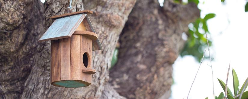 Como hacer una casita para pajaros casitas para pajaros - Casas para pajaros ...