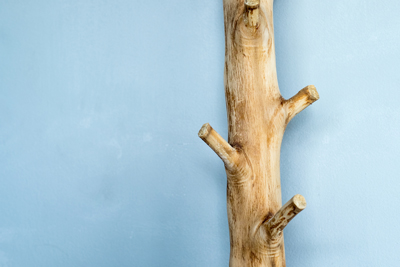 C mo hacer un perchero con ramas de rboles for Como hacer un perchero de pared