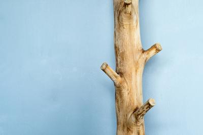 C mo hacer un perchero con ramas de rboles - Percheros infantiles de pared ...