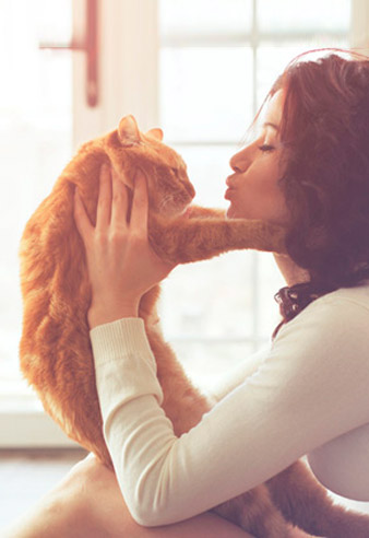 Educa a tu gato